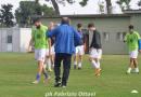 AA Colli - palmense 03-11-2018 (3-1)